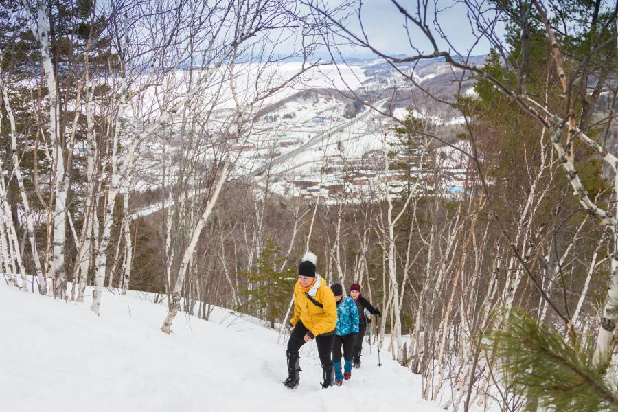 Hiking up Mount Sugarloaf in the winter