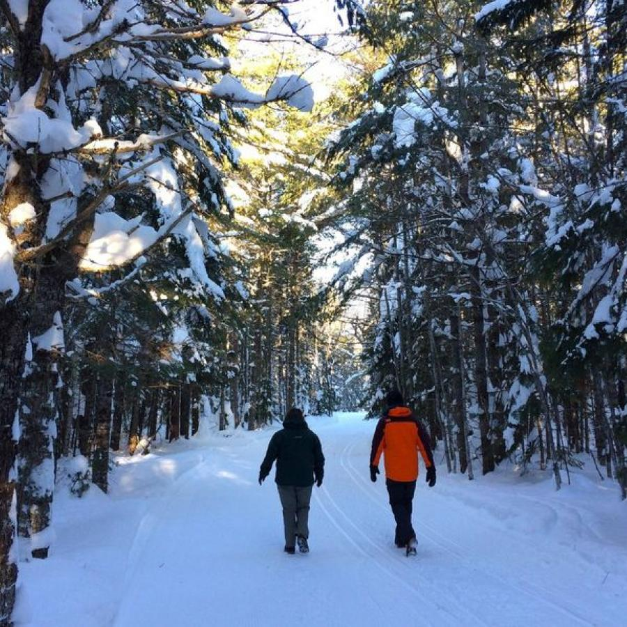 winter hike on trails - New Brunswick Canada