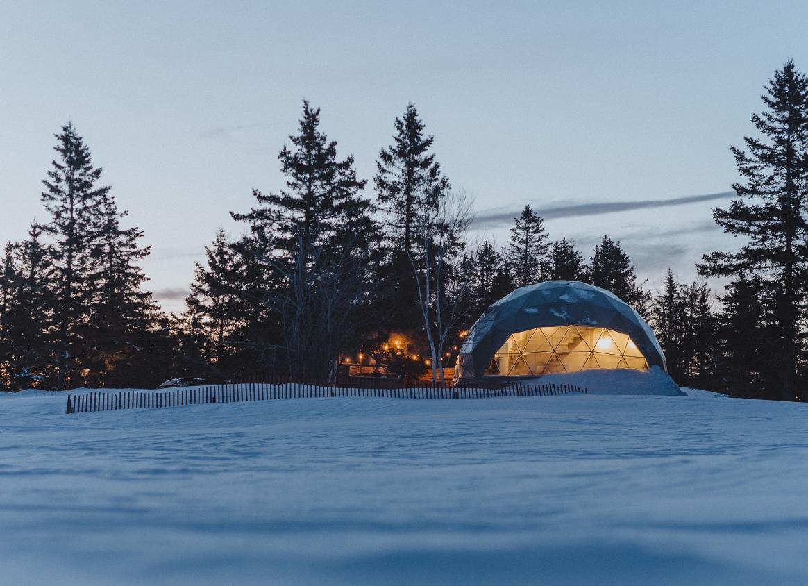 Domes in winter